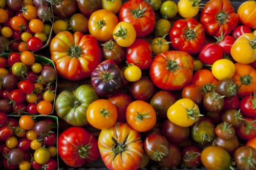 pro-culinaire-legumes-002