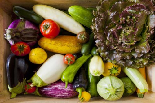 pro-culinaire-legumes-003
