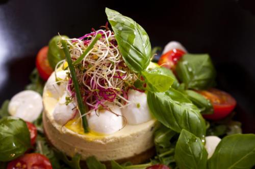 pro-culinaire-plats-035