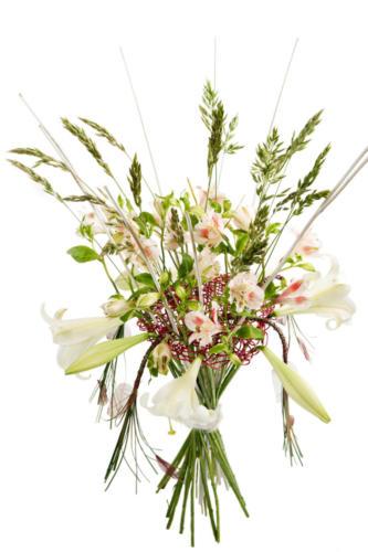 pro-fleurs-002
